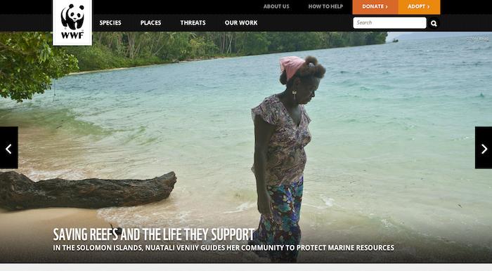 世界自然保護基金